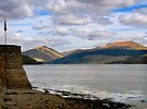 Evening at Loch Fyne by Carol Bleasdale