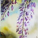 Wisteria by LuciaM