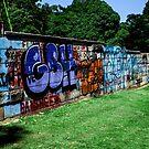 Sydney Graffiti #11 by Nenad  Njegovan