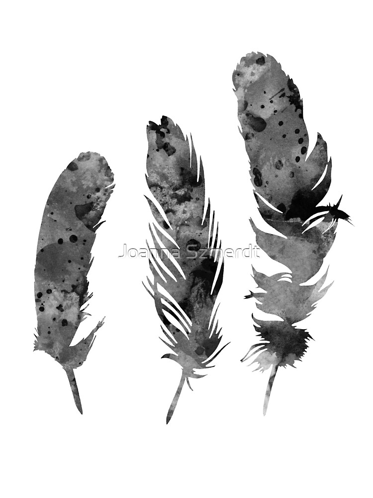 Gray feathers watercolor art print painting by Joanna Szmerdt