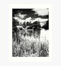 Kew Gardens Art Print