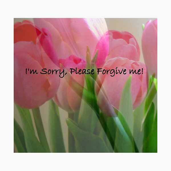 I'm Sorry, Please Forgive Me Photographic Print