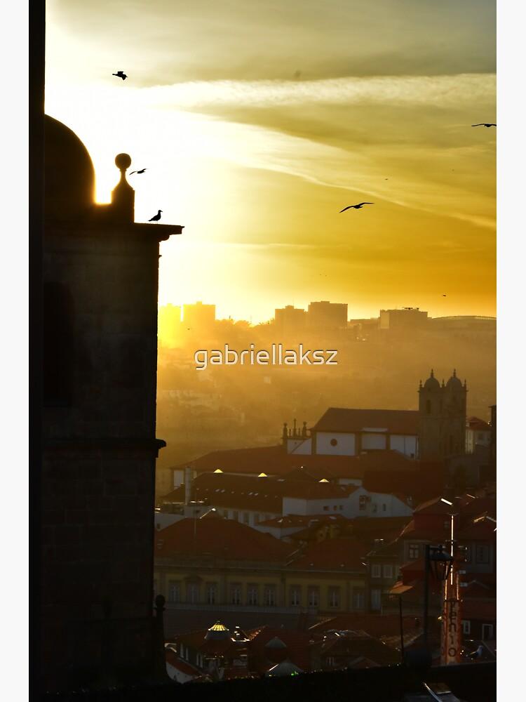 Porto in golden light by gabriellaksz