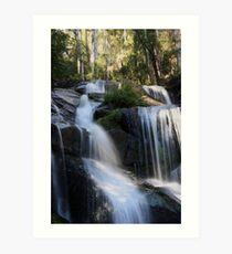 Toorongo Falls 2 Art Print