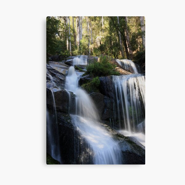 Toorongo Falls 2 Canvas Print