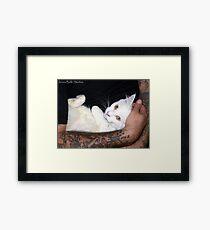 Tough Love Framed Print