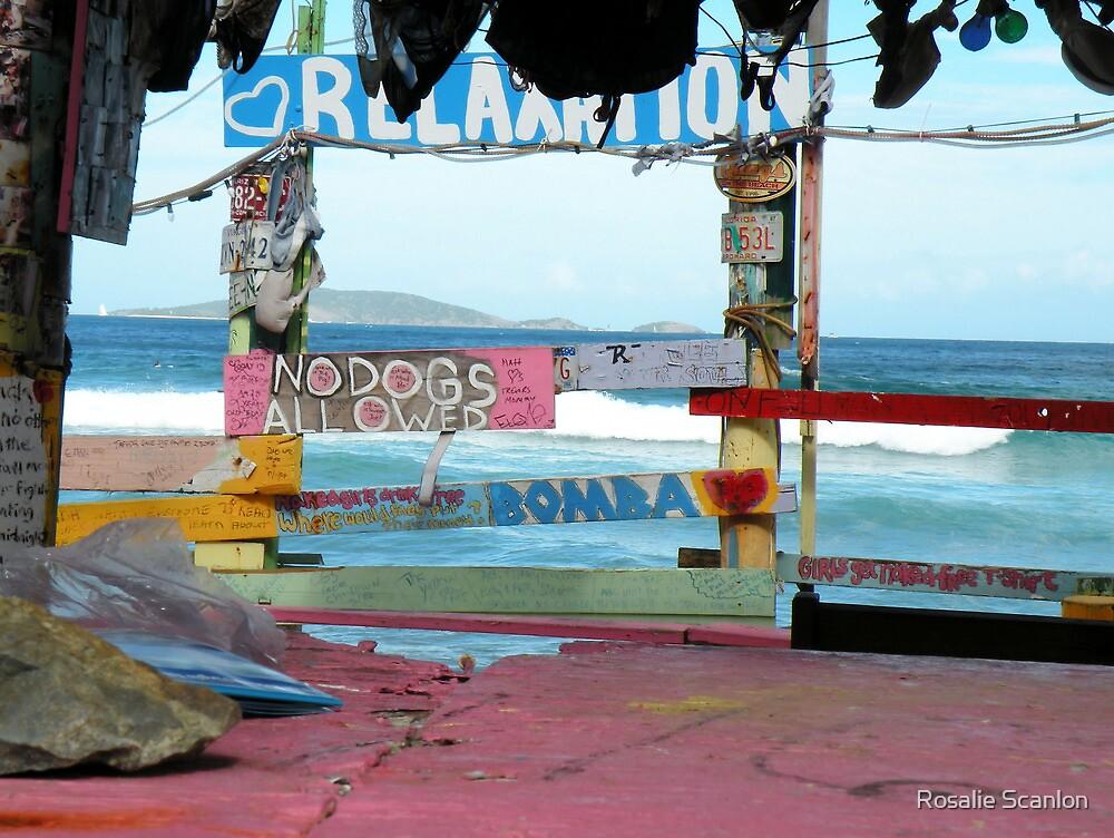 No Dogs Allowed by Rosalie Scanlon