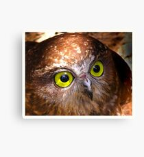 Here's looking at you Babe Canvas Print