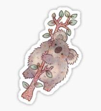 Chubby Koala on a Tree - Australian Wildlife Sticker