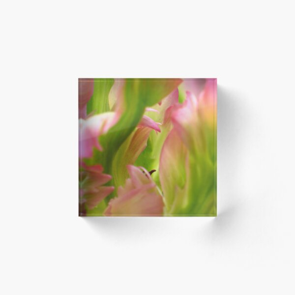 Green Wave  - JUSTART © Acrylic Block