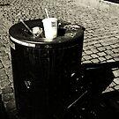 Chose the Trash by Robert Drobek