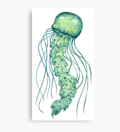 - Green jellyfish - Canvas Print