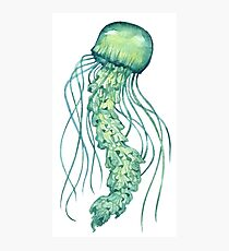 - Green jellyfish - Photographic Print