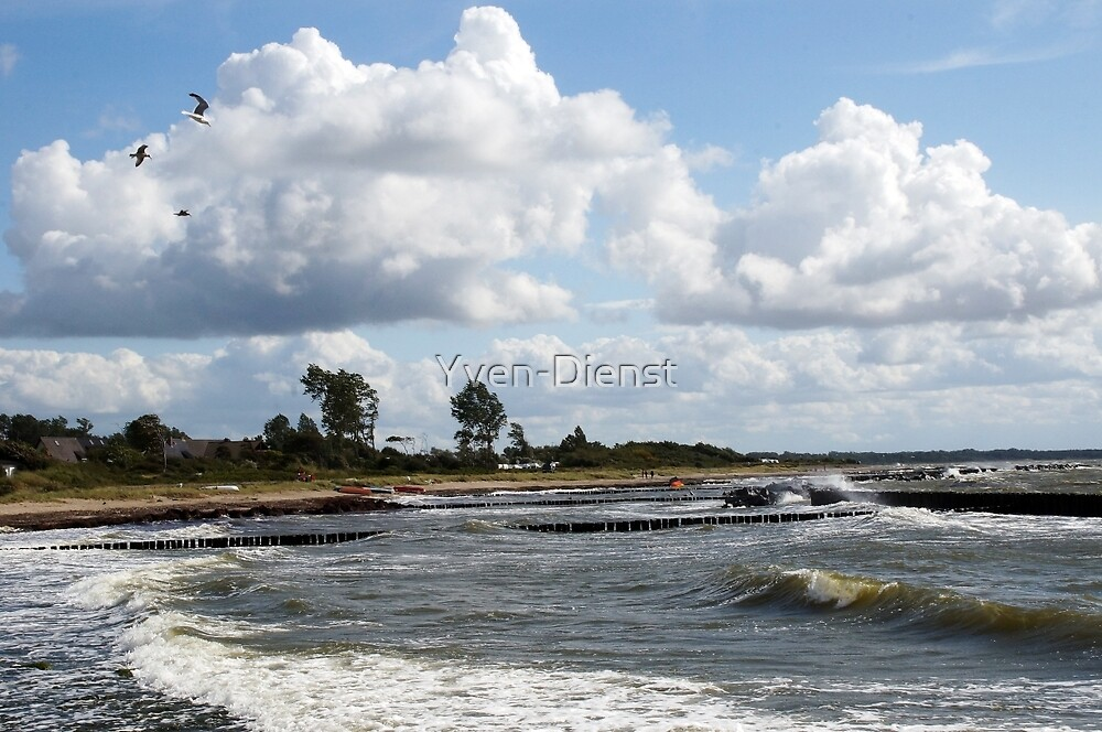 Stormy Baltic Sea beach by Yven-Dienst