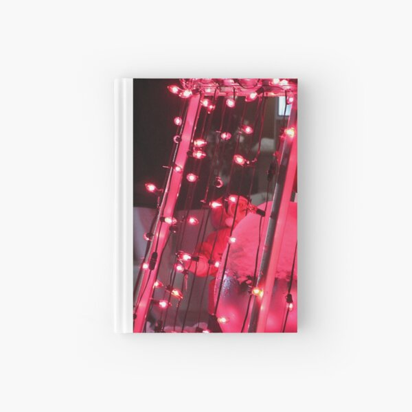 Bedazzlement of a Child Hardcover Journal