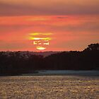 Tiger Island Beach by Bob Hardy