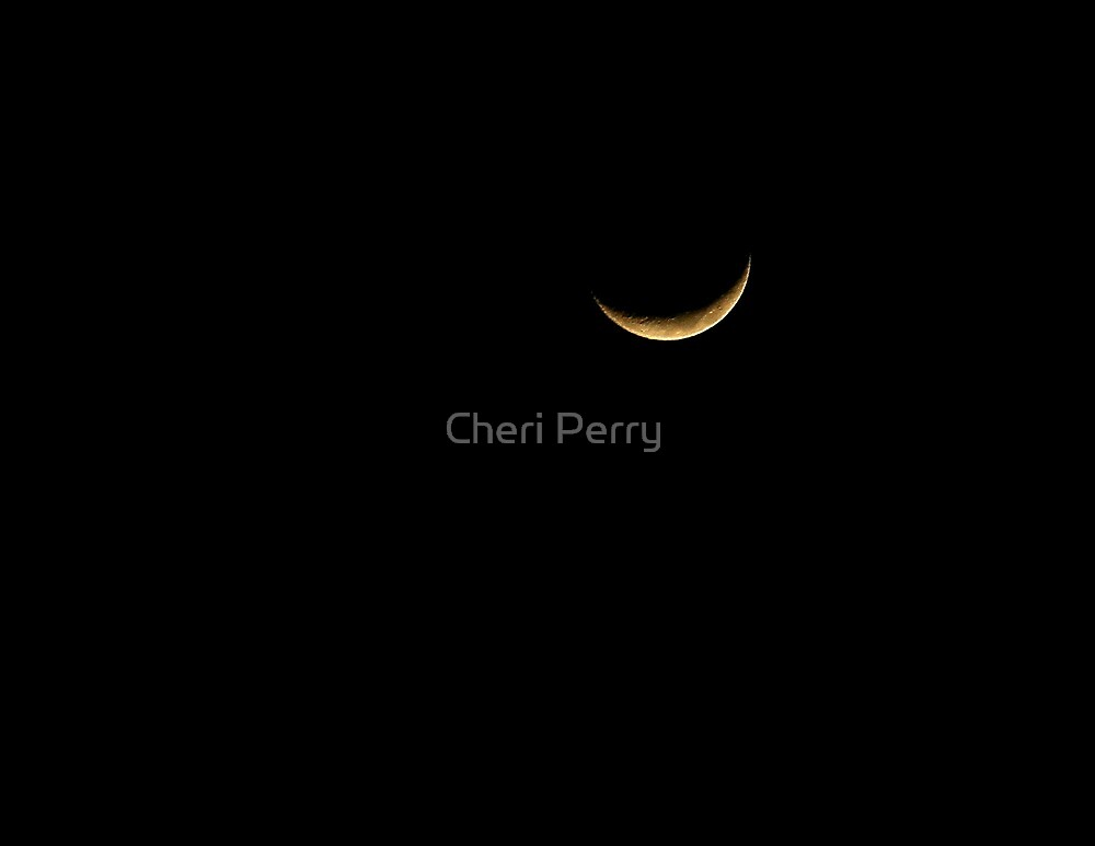 Moon Shot by Cheri Perry