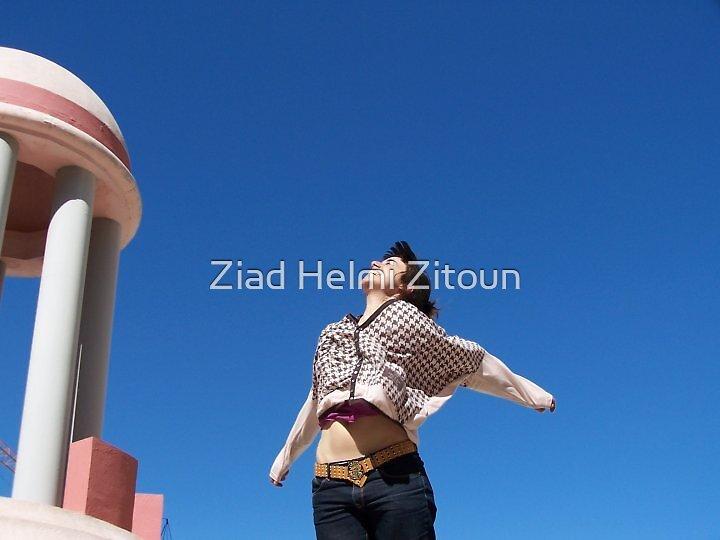 Freedom - Ziad Zitoun - 2010  by Ziad Helmi Zitoun