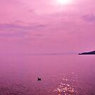 duck on the water in lake garda by xxnatbxx
