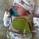 Dino Baby by KristaLynn1807