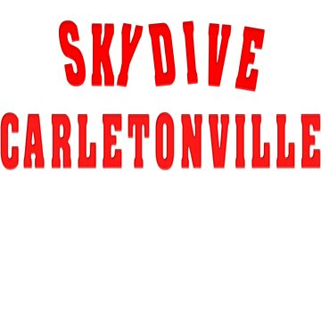 Skydive on Dropzone Carletonville von Live-Counter