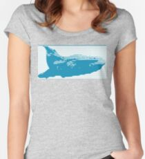 67 Complex / Blue Humpback Women's Fitted Scoop T-Shirt
