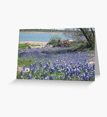 Bluebonnets  Where They Have Not Been For Years. Greeting Card
