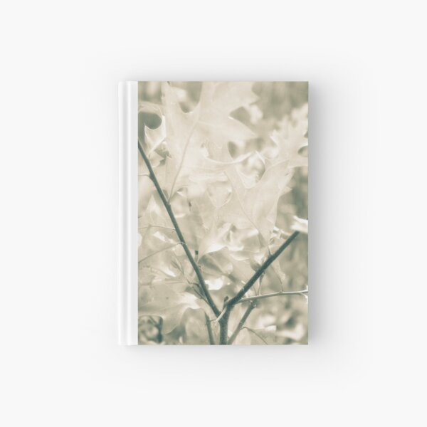 A Summer Reflection Hardcover Journal