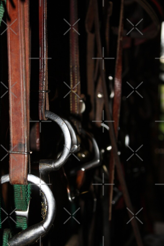 The Tack Room by Alyce Taylor