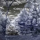 Murray River evening infrared 720nm by BigAndRed