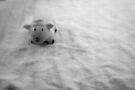 little sheep von Marianna Tankelevich