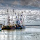 Shrimp Boats at Shem Creek by TJ Baccari Photography