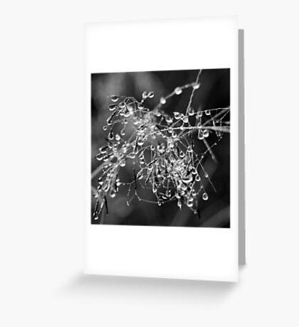 Beautiful Tangled Mess Greeting Card
