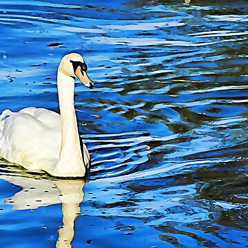 White Swan in Deep Blue Water by KnutsonKr8tions