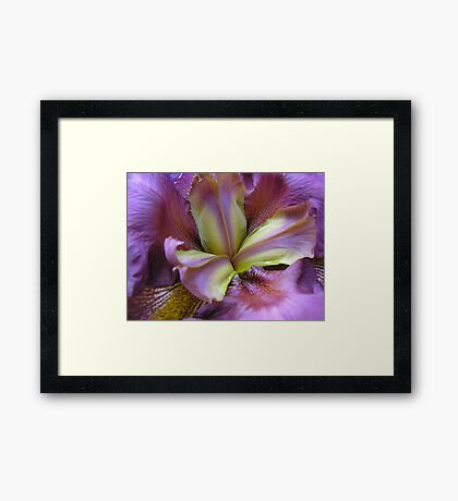 Deep in the heart of perfection Framed Print