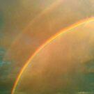 Sunny Rainbow  by WhiteDove Studio kj gordon