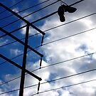 Shoes on a telephone pole by Amanda Huggins