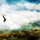 Red Kite Morning. II A Turning. by Ken Simm