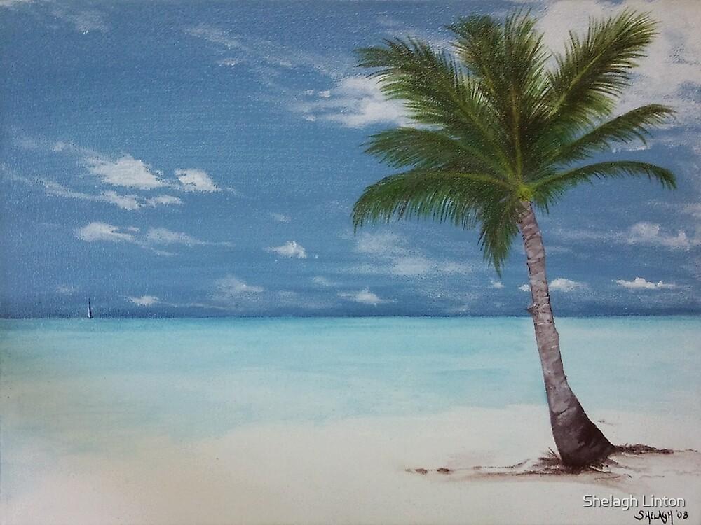 Jamaican Palm by Shelagh Linton