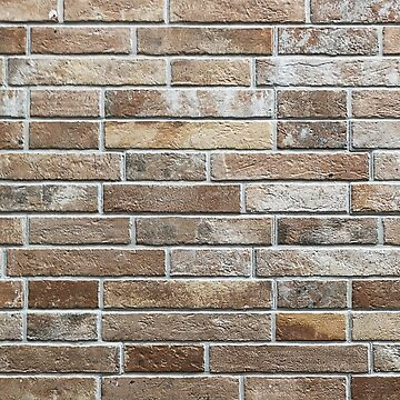 Brick Wall Backdrop 2 by ShirtPro