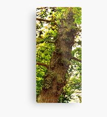 Bumpy Tree Metal Print