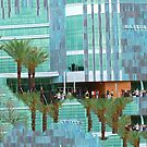 University of South Florida by ellenmueller