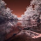 Murray River evening infrared 650nm by BigAndRed