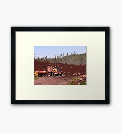 Astonishment  Framed Print