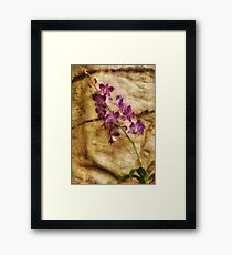 Orchid - Just Splendid Framed Print