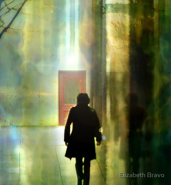 The Door by Elizabeth Bravo