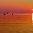 Lake Biwa, Japan: last light. by johnrf