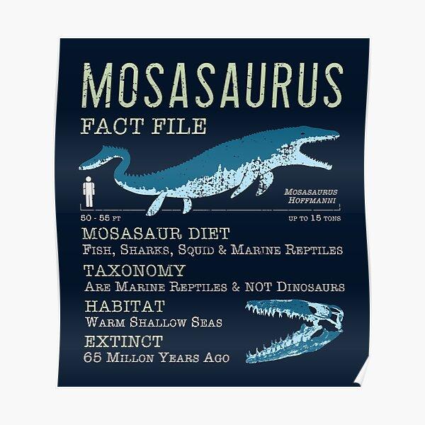 Mosasaurus Facts Poster
