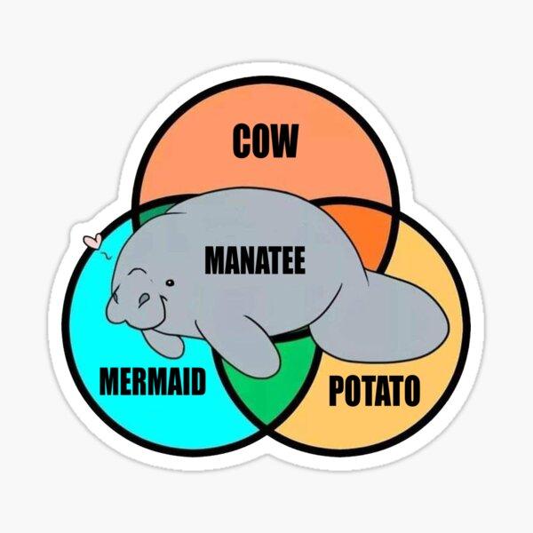 Manatee Funny Tee Sticker