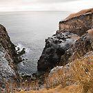 Coastal landscape by Gaspar Avila